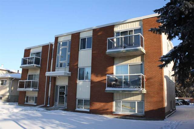 303 12409 82 Street NW, Edmonton, AB T5B 2X5 (#E4187619) :: Initia Real Estate