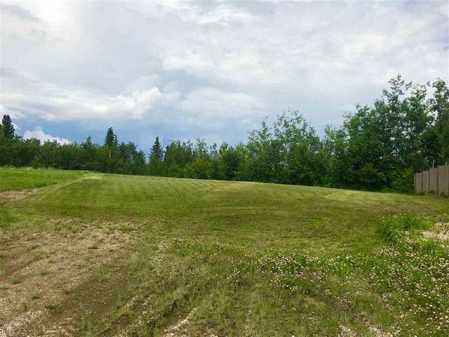 1508 13 Avenue, Cold Lake, AB T9M 2E1 (#E4187843) :: The Foundry Real Estate Company