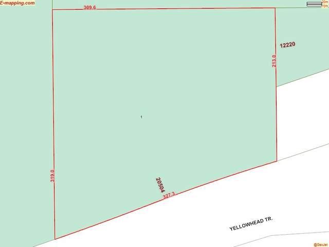 20504 Yellowhead Tr NW, Edmonton, AB T5V 1T8 (#E4188394) :: Müve Team | RE/MAX Elite