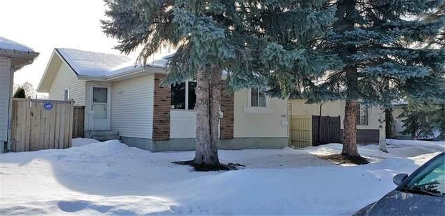 9143 180A Avenue, Edmonton, AB T5Z 2K3 (#E4188505) :: RE/MAX River City