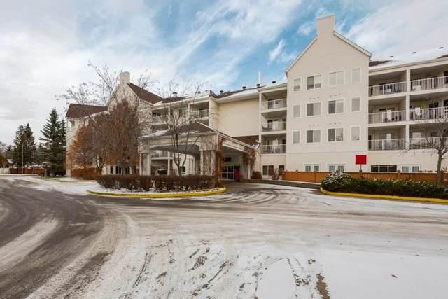 402 78 Mckenney Avenue, St. Albert, AB T8N 1L9 (#E4189298) :: Initia Real Estate