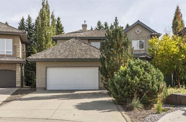 1633 Hector Road, Edmonton, AB T6R 3G9 (#E4191760) :: Initia Real Estate