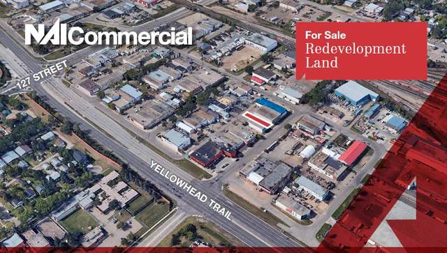 12536 124 ST NW NW, Edmonton, AB T5L 0N5 (#E4193536) :: RE/MAX River City