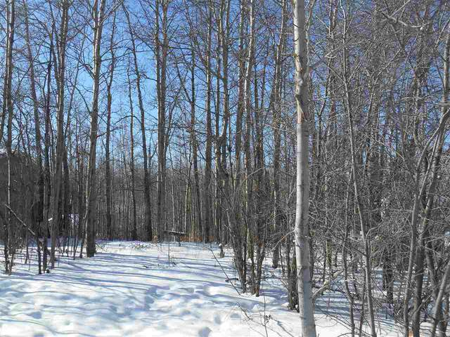 615- 6th Street, Rural Wetaskiwin County, AB T0C 2V0 (#E4197946) :: The Foundry Real Estate Company