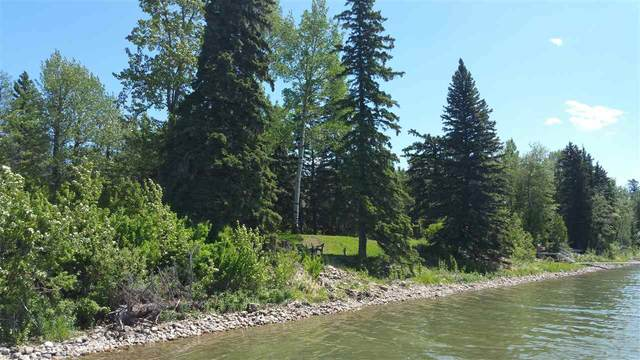 73 Silver Beach Road, Rural Wetaskiwin County, AB T0C 2C0 (#E4198461) :: The Foundry Real Estate Company