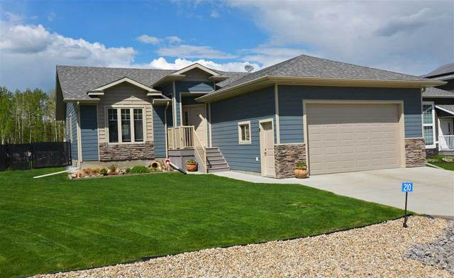 210 49119 Rge Rd 73, Rural Brazeau County, AB T7A 0A9 (#E4198894) :: The Foundry Real Estate Company