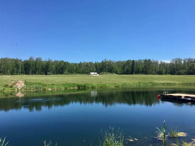 Twp 483 RR 281, Rural Leduc County, AB T0C 0V0 (#E4199506) :: The Foundry Real Estate Company