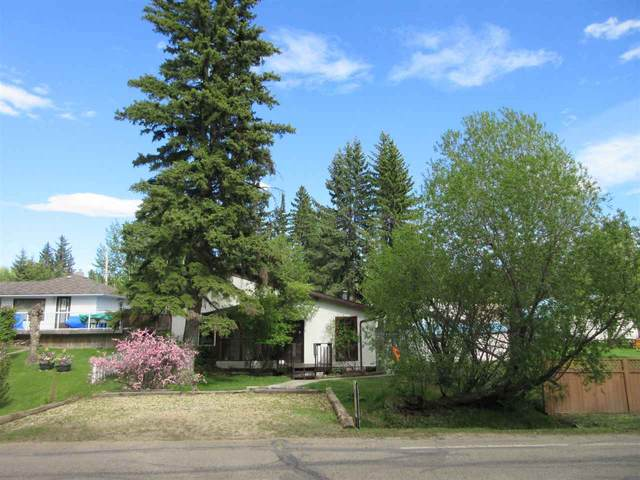 5838 50 Street, Rural Wetaskiwin County, AB T0C 2C0 (#E4199912) :: The Foundry Real Estate Company