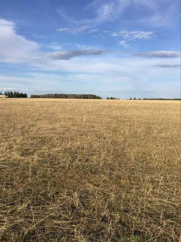 65012 Twp Rd 462, Rural Wetaskiwin County, AB T0C 0T0 (#E4200484) :: RE/MAX River City