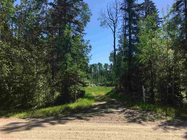 38 50529 RGE RD 21, Rural Parkland County, AB T7Z 1X5 (#E4200502) :: The Foundry Real Estate Company
