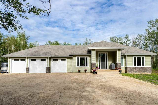 361 50419 RR 203, Rural Beaver County, AB T0B 4J2 (#E4204210) :: Initia Real Estate