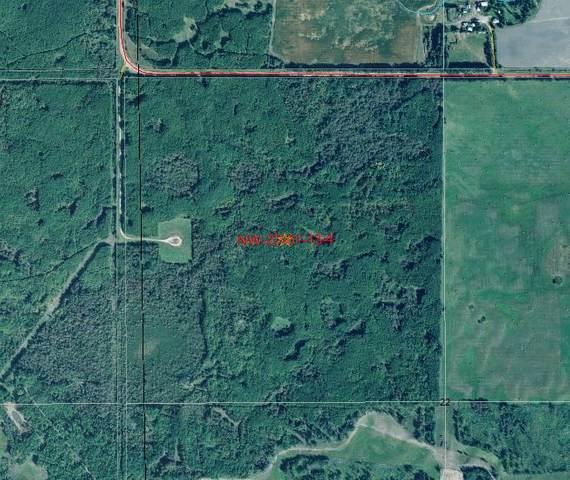 RR 133 And Twp Rd 614, Rural Smoky Lake County, AB T0A 3C0 (#E4205073) :: Müve Team | RE/MAX Elite