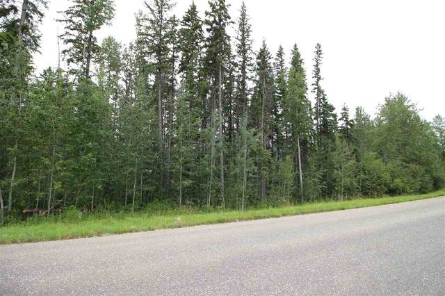 Lot 308 2306 Twp Rd 540, Rural Lac Ste. Anne County, AB T0E 1V0 (#E4205150) :: Müve Team | RE/MAX Elite
