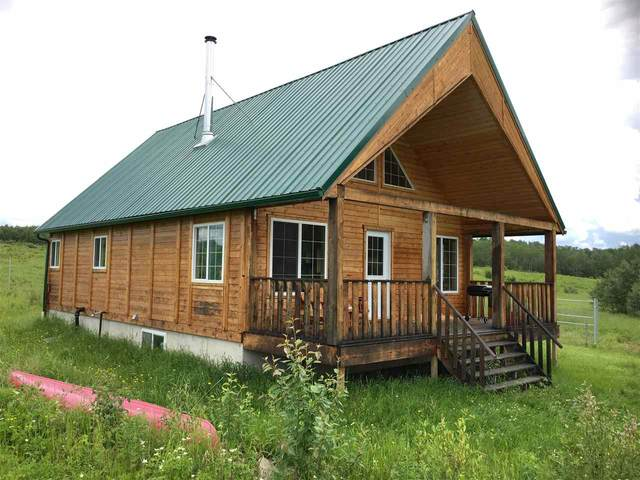 60427 Rge Rd 113, Rural St. Paul County, AB T0A 3A0 (#E4205500) :: The Foundry Real Estate Company