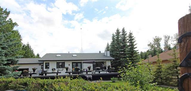 294 Grandview Beach, Rural Wetaskiwin County, AB T0C 2V0 (#E4205953) :: The Foundry Real Estate Company