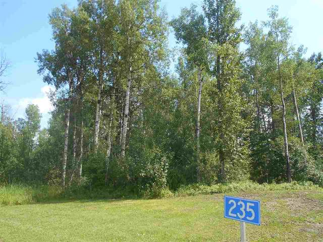 235 49119 RR73, Rural Brazeau County, AB T7A 0B9 (#E4208391) :: Initia Real Estate