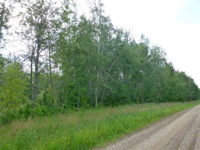 0 0, Rural Lac Ste. Anne County, AB T0E 2A0 (#E4208454) :: RE/MAX River City