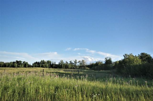 Rng Rd 221 Twp Rd 503 Lot 1, Rural Leduc County, AB T0B 5O3 (#E4209536) :: RE/MAX River City