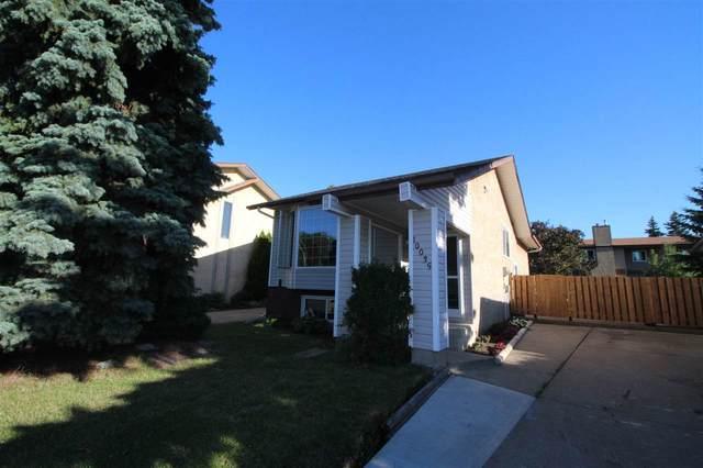 10035 171 Avenue, Edmonton, AB T5X 4L2 (#E4209610) :: RE/MAX River City