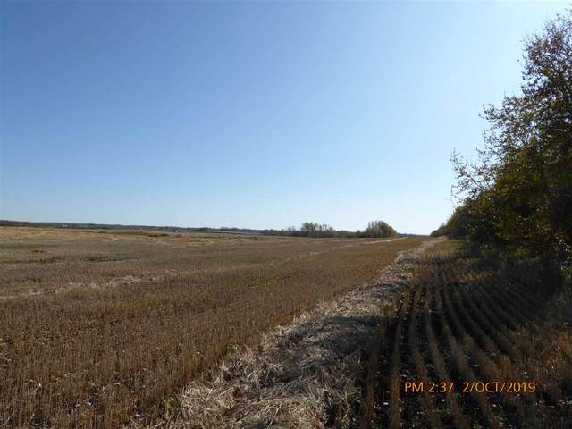 N Of Hwy #14 Rr 193, South Of Rr Right Of Way, Rural Beaver County, AB T0B 4J1 (#E4210193) :: RE/MAX River City