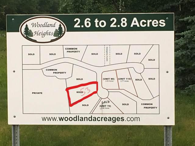 53, 50535 RR 233, Rural Leduc County, AB T4X 0L4 (#E4210793) :: The Foundry Real Estate Company