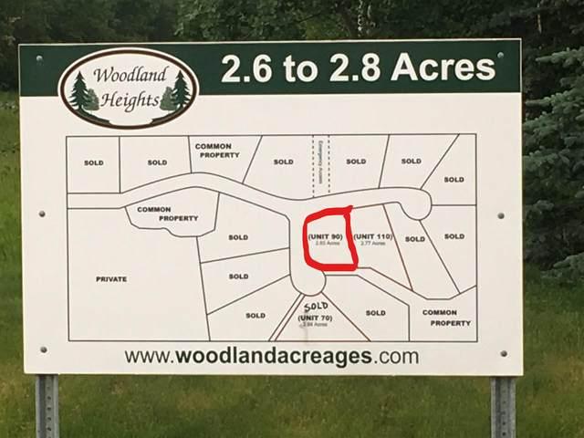 90, 50535 RR 233, Rural Leduc County, AB T4X 0L4 (#E4210795) :: The Foundry Real Estate Company
