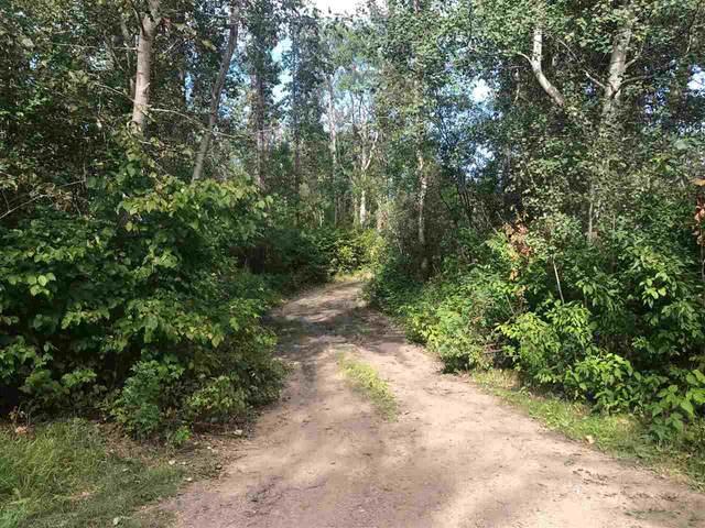 119 54425 Lac Ste. Anne Trail, Rural Lac Ste. Anne County, AB T0E 0A0 (#E4212864) :: Initia Real Estate