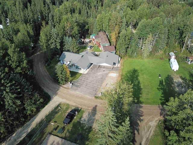 45 Birchwood Village, Rural Brazeau County, AB T0C 1W0 (#E4213739) :: Initia Real Estate