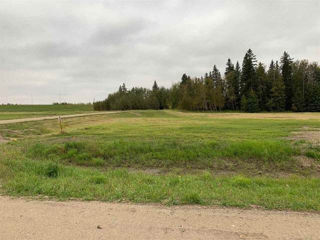 17 26425 TWP RD 532 A, Rural Parkland County, AB T7X 0G3 (#E4214412) :: Initia Real Estate
