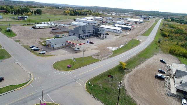 4745 49 STREET, Hardisty, AB T0B 1V0 (#E4215318) :: The Foundry Real Estate Company