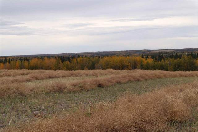 Hwy 20 Twp 473A, Rural Brazeau County, AB T0C 0P0 (#E4215822) :: The Foundry Real Estate Company