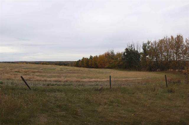 Hwy 20 Twp 473A, Rural Brazeau County, AB T0C 0P0 (#E4215825) :: The Foundry Real Estate Company