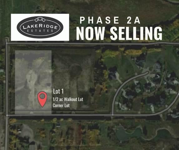 1-53217 Rr 263 NW, Rural Parkland County, AB T7Y 1E2 (#E4215961) :: Initia Real Estate