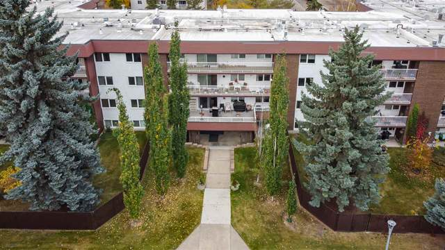 208 14810 51 Avenue, Edmonton, AB T6H 5G5 (#E4217140) :: Initia Real Estate
