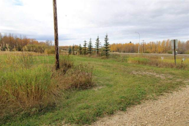 433 Swedberg Road, Rural Wetaskiwin County, AB T0C 2V0 (#E4217267) :: The Foundry Real Estate Company