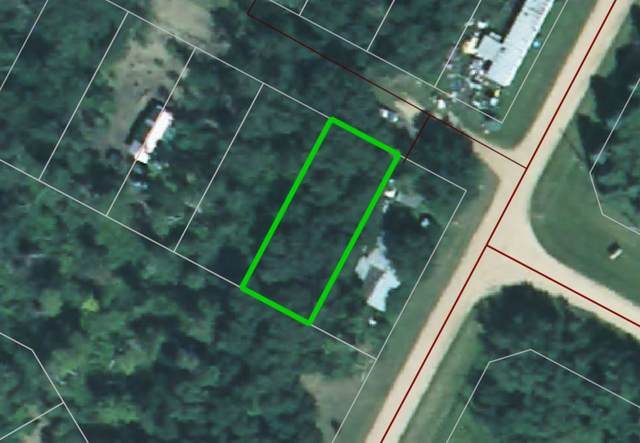 Bl 2 Lot 17 Summerhaven, Rural Wetaskiwin County, AB T0C 1H0 (#E4218037) :: The Foundry Real Estate Company