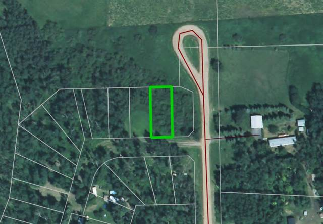Bl 9 Lot 2 Summerhaven, Rural Wetaskiwin County, AB T0C 1H0 (#E4218040) :: The Foundry Real Estate Company