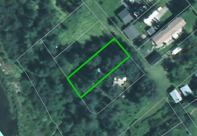 542 1 Avenue E, Rural Wetaskiwin County, AB T0C 0T0 (#E4218069) :: Initia Real Estate