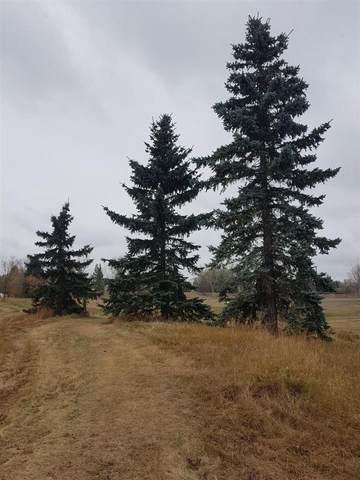 300 60417 Range Road 124, Rural St. Paul County, AB T0E 3E0 (#E4218798) :: Müve Team | RE/MAX Elite