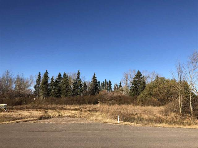Hwy 29 RR 175, Rural Lamont County, AB T0B 4B0 (#E4219438) :: The Foundry Real Estate Company