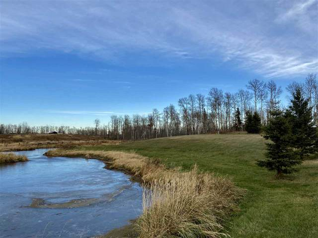 49101 Range Road 233, Rural Leduc County, AB T4X 1K8 (#E4219459) :: The Foundry Real Estate Company