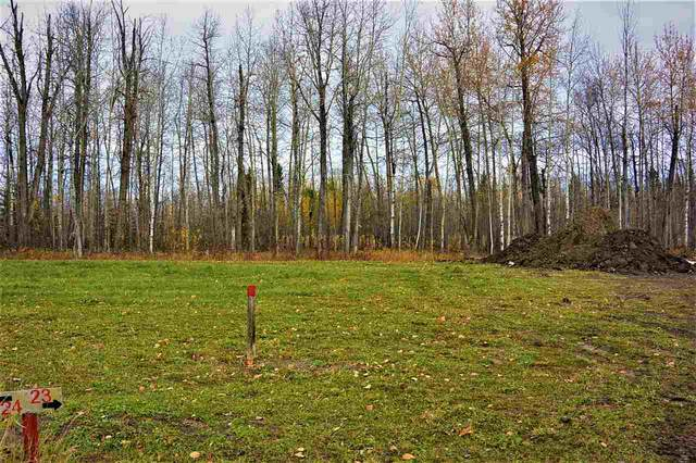 23 River Ravine Estates, Rural Brazeau County, AB T7A 1T9 (#E4220547) :: Initia Real Estate