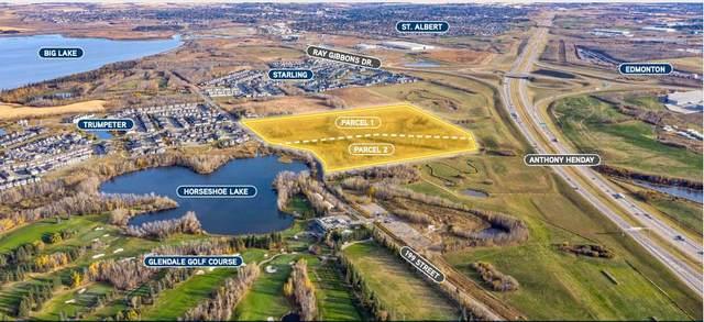 12735 199 ST NW, Edmonton, AB T5V 1T7 (#E4220809) :: Initia Real Estate