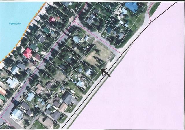 503 2 Avenue, Rural Wetaskiwin County, AB T0C 2V0 (#E4221172) :: RE/MAX River City