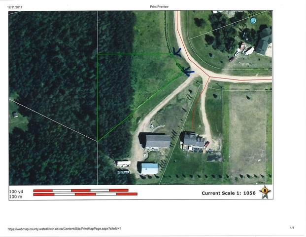 4 Beachside Estates, Rural Wetaskiwin County, AB T0C 2V0 (#E4221178) :: RE/MAX River City