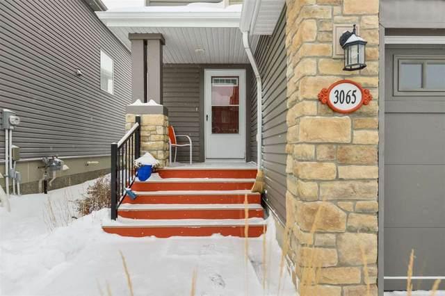 3065 Whitelaw Drive, Edmonton, AB T6W 0T8 (#E4221559) :: The Foundry Real Estate Company