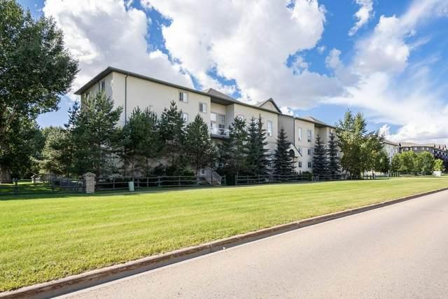 405 260 Lewis Estates Boulevard, Edmonton, AB T5T 3Y4 (#E4222180) :: The Foundry Real Estate Company
