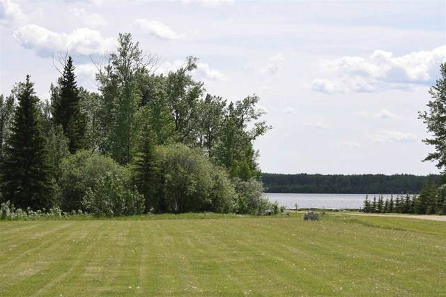 3 Oakes Trail, Rural Wetaskiwin County, AB T0C 0T0 (#E4222823) :: Müve Team | RE/MAX Elite
