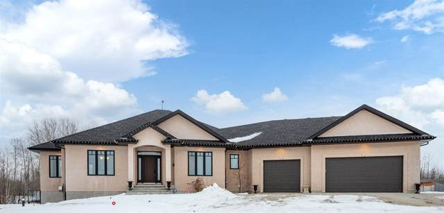 270 50417 Range Road 232, Rural Leduc County, AB T4X 0L1 (#E4223526) :: Müve Team | RE/MAX Elite