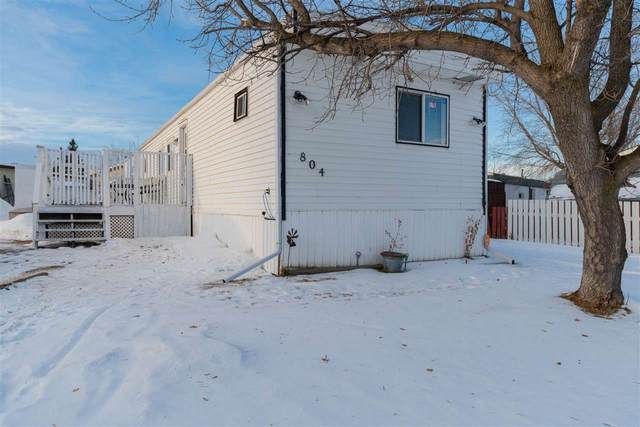 804 53222 RR 272, Rural Parkland County, AB T7X 3R4 (#E4223692) :: The Foundry Real Estate Company